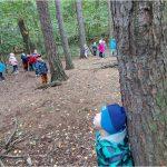 S veverkou v lese - 3.tř.